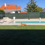 piscina con escalera de obra en cortiguera cantabria (3)